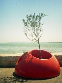 A Mobile Tree Pot by Karolis Civinskas