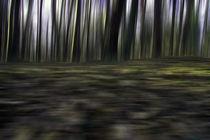 Wald - abstrakt - Bewegung by Jens Berger
