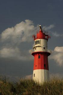 ' Leuchturm' von Heidi Brausch