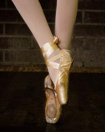 Ballerina by Tony Deal