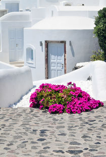 Whitewash and Flowers in Cyclades Greece by Katerina Vorvi