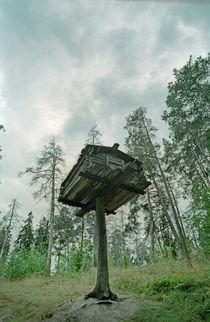Northern tree house by Andrei Becheru