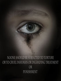 Torture by Charlotte Fenner