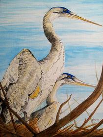 Nesting Herons by Deb Thompson