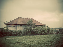 Balinese-house-2-copy
