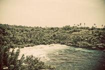 Nusa Lembongan Beach Landscape by Darren Martin