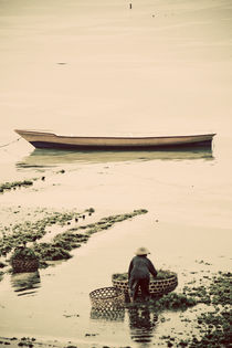 Seaweed Farming Boats by Darren Martin
