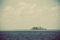 Deserted Island von Darren Martin
