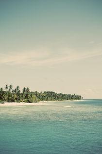 Maldivian Island 3B von Darren Martin