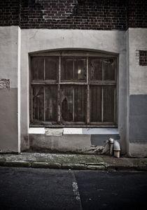 Urban Decay  by Darren Martin