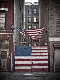 American Flag von Darren Martin