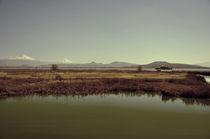 Texcoco Lake 02 von Luis  Gallardo