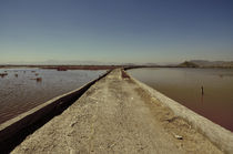 Texcoco Lake 07 von Luis  Gallardo