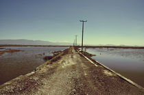 Texcoco Lake 08 von Luis  Gallardo