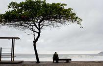 A Rainy Day 2 von Reinaldo Smoleanschi