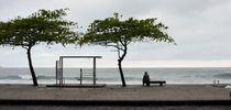 A Rainy Day von Reinaldo Smoleanschi