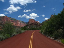 The Road into Zion von Jeffrey Batt