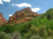 Zion is a Green Desert von Jeffrey Batt