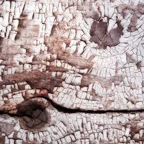paint & cracks by Priska  Wettstein