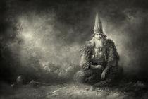 Wizard von yaroslav-gerzhedovich