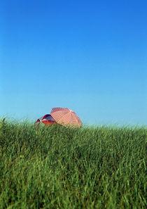 Intimate Beach Umbrellas von John Greim