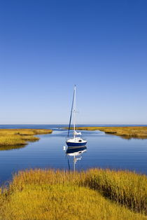 Salt Marsh, Sailboat, Cape Cod, USA von John Greim