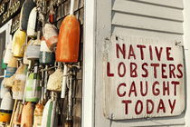 Fresh Lobster, Cape Cod, MA, USA by John Greim