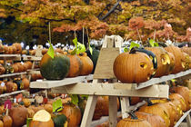 Pumpkin festival, New Hampshire, USA by John Greim