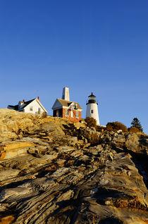 Pemaquid Point Lighthouse, Maine, USA von John Greim