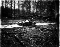 race von Sander de Wilde