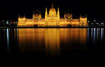 Budapest, House of Parliament von Tiberiu Calin  Gabor