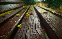 Yellow Bench by Boris Chernykov