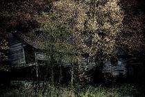 shack by Sander de Wilde