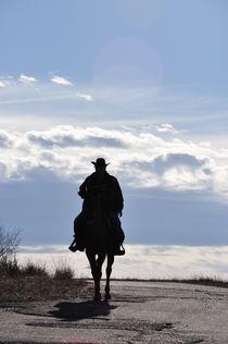 Cowboy by Svetlana Yukina