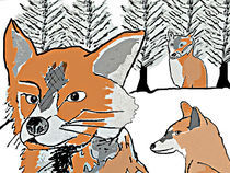 Foxes in the snow 1 by Sarah K Murphy