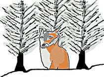 Foxes in the snow 2 by Sarah K Murphy