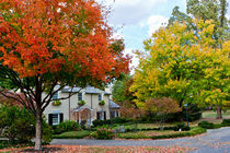 Autumn in an american suburb. USA, Kentucky by Irina Moskalev