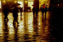 Walking in the Rain von Brian  Leng