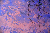 Pink and Blue Wall von Brian  Leng