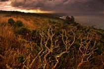 Rame Head Rising von Mal Smith