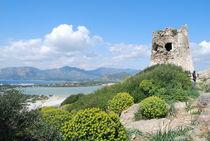 Sardinian Landscape by Stefania Arca