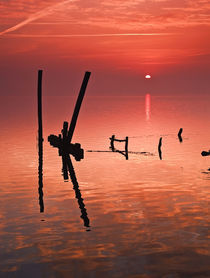Early morning Light III von Pedro Afonso