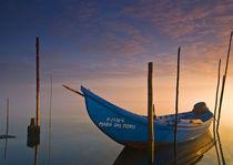 Early morning light II von Pedro Afonso