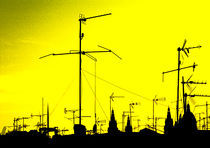 Antenas-amarillo