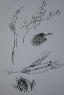 Pflanzenansammlung I von Katja Finke