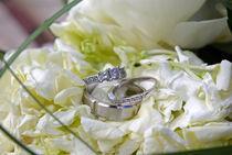 Wedding rings by C. Unal