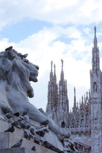 Milan by Alice Luidelli