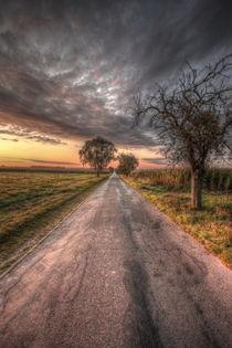 Herbst by Manfred Hartmann
