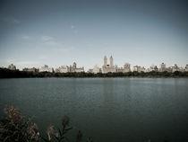 Jackie Onassis Reservoir by Darren Martin