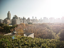 View From the Met Museum. by Darren Martin